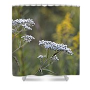 Wildflowers In September 2012 Shower Curtain