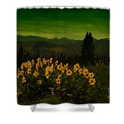 Wildflowers In The Beartooth Mountains Shower Curtain