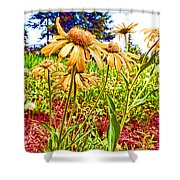 Wildflowers In The Wilds Of Colorado Shower Curtain