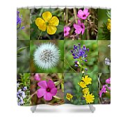 Wildflowers Mosaic Shower Curtain