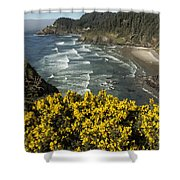 Wildflowers On An Atypical Winter's Day On The Oregon Coast Shower Curtain