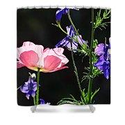 Wildflowers On Black Shower Curtain