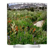 Wildflowers On Display Shower Curtain