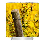 Wildflowers On Fence Post Shower Curtain
