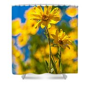 Wildflowers Standing Out Shower Curtain