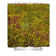 Wildflowers Vertical Shower Curtain