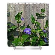 Wildly Purple Shower Curtain
