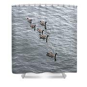 Willamette River Ducks Shower Curtain