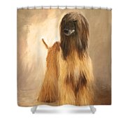 Willem Van Oranje Shower Curtain