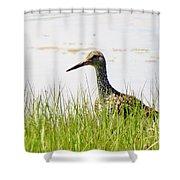 Willet Hunter Shower Curtain