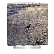 Willet In The Waves Shower Curtain