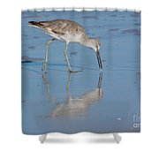 Willet Reflection Shower Curtain