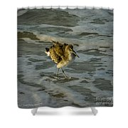 Willet Washing 1 Shower Curtain