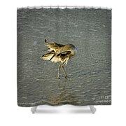 Willet Washing 6 Shower Curtain