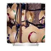 Williamsberg Hats Shower Curtain