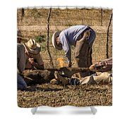 Williamson Valley Roundup 27 Shower Curtain