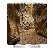 Willis Creek Slot Canyon 1 - Grand Staircase Escalante National Monument Utah Shower Curtain