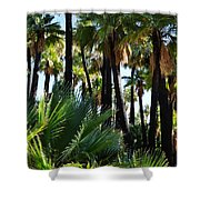 Willis Palm Oasis Shower Curtain