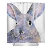 Willis Rabbit Shower Curtain