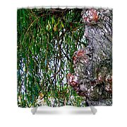 Willow Man Profile Shower Curtain