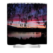 Willow Silhouette Shower Curtain