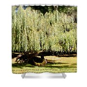 Willow Tree With Job Verse Shower Curtain