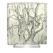 Willows By The Lake Shower Curtain