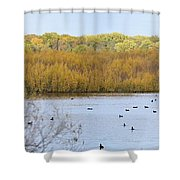 Willows Of October Shower Curtain