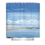Winchelsea Gulls Shower Curtain
