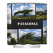 Wind-bent Flag Trees In Tierra Del Fuego Shower Curtain