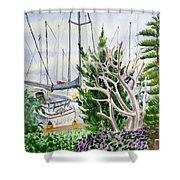 Wind Drifter  Shower Curtain