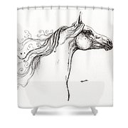 Wind In The Mane 1 Shower Curtain