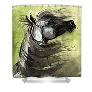 Wind In The Mane 3 Shower Curtain