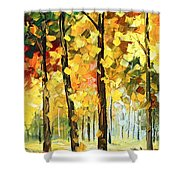Wind Of Dreams 1 Shower Curtain