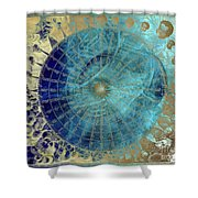 Wind Rose Map Of The Winds Shower Curtain