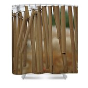 Wind Song - 2 Shower Curtain