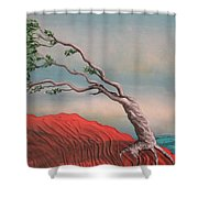 Wind Swept Tree Shower Curtain