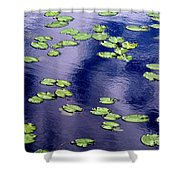 Wind Whirling The Lake Shower Curtain