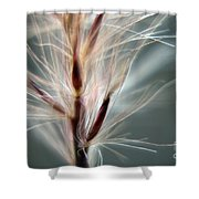 Wind Whisper Shower Curtain