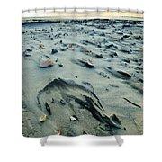 Windblown Beach Shower Curtain