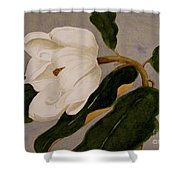 Windblown Magnolia Shower Curtain