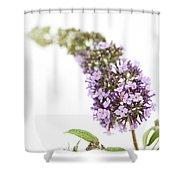 Windfall Shower Curtain