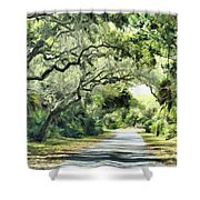 Winding Path Shower Curtain