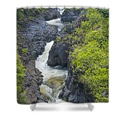 Winding River Pools Shower Curtain