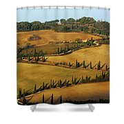 Winding Road And Cypress Trees In Tuscany 1 Shower Curtain