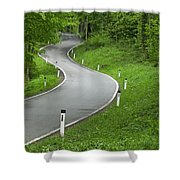 Winding Road In The Woods Shower Curtain