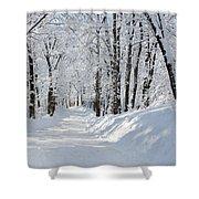 Winding Snowy Road In Winter Shower Curtain
