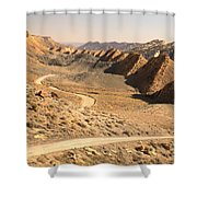 Winding Through The Coxcomb Shower Curtain