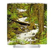 Winding Through The Forest Shower Curtain