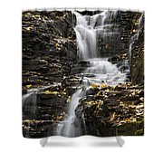 Winding Waterfall Shower Curtain by Christina Rollo